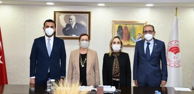 Başkan Toklu, Alanya'nın taleplerini Ankara'ya iletti