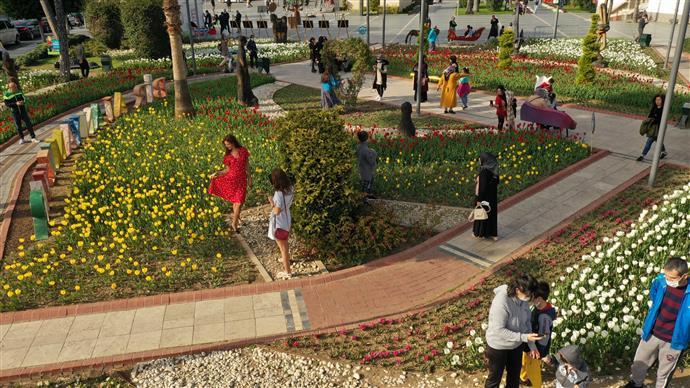 Alanya'da açan çiçekler baharı müjdeledi