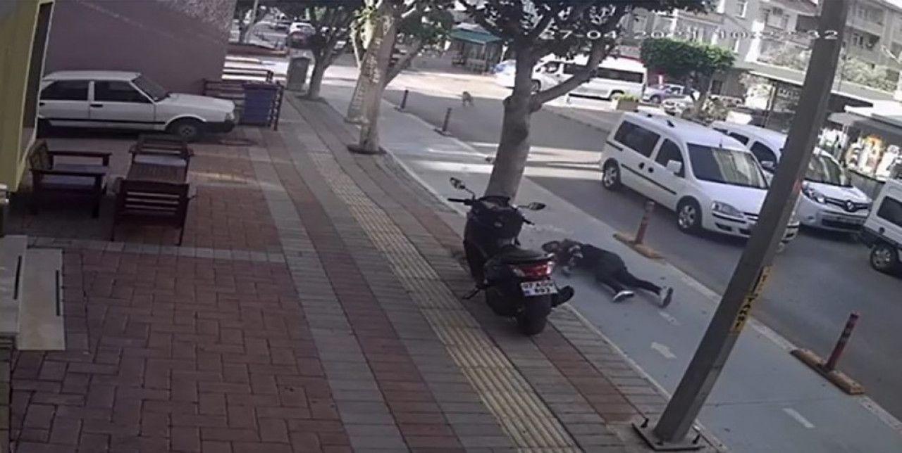 Alanya'da köpeğe çarpan motosiklet sürücüsü ağır yaralandı