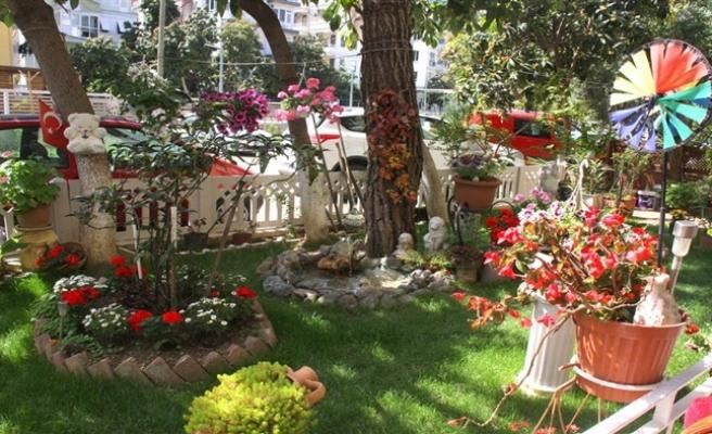 Alanya'da en güzel balkon ve bahçe seçilecek