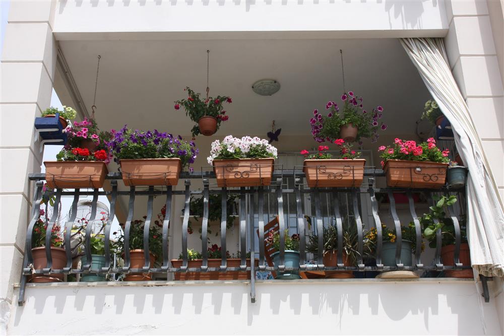 Alanya'da en güzel balkon ve bahçe ödüllendirilecek