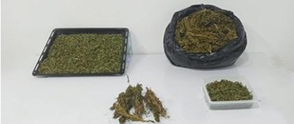 Alanya'da uyuşturucu ticareti yapılan eve baskın düzenlendi