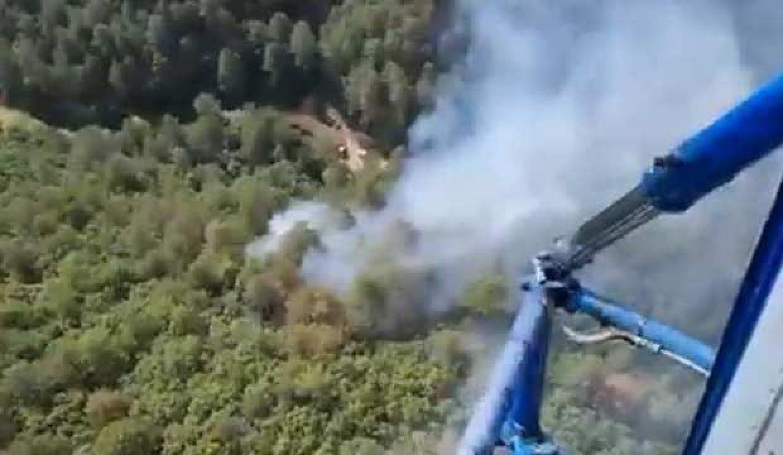 Antalya'nınManavgat ilçesinde çıkan orman yangınında bir dönüm alan zarar gördü