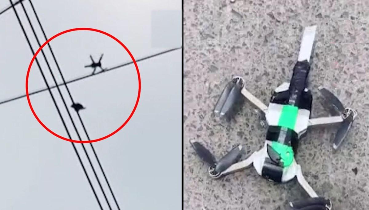Peru'da Elektrik teline asılı kalan güvercin, bıçak bağlanan drone ile kurtarıldı