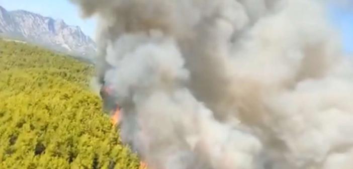 Antalya'nın Serik ilçesinde orman yangını kontrol altına alındı