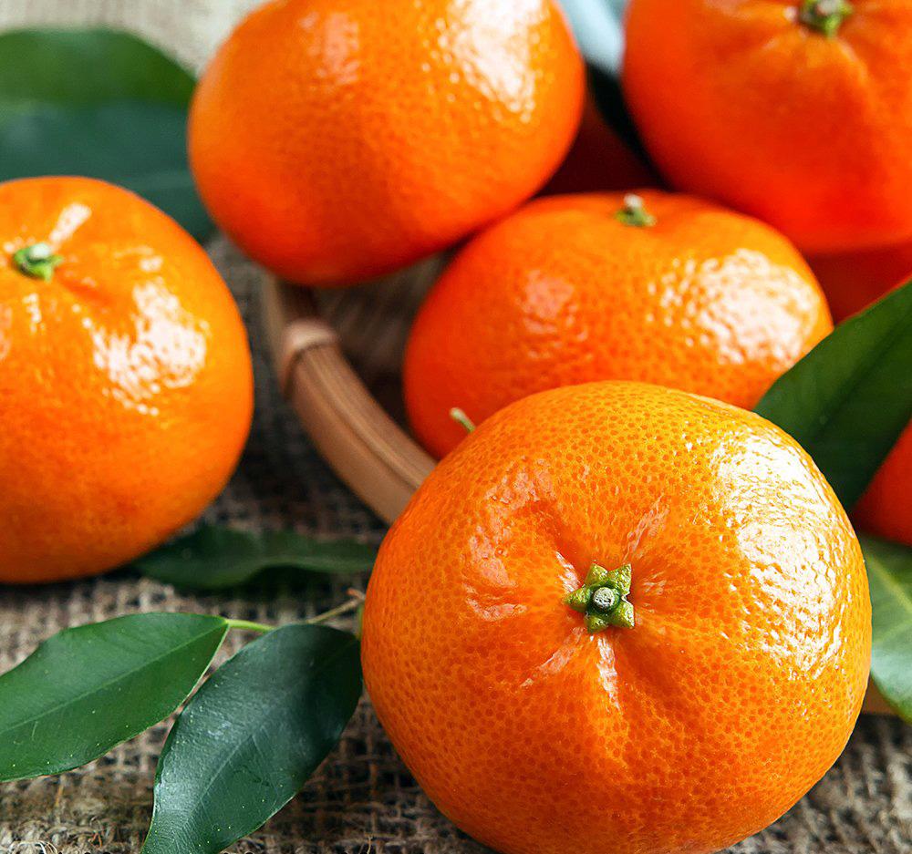 Rusya, 218 ton mandalinayı Türkiye'ye gönderdi